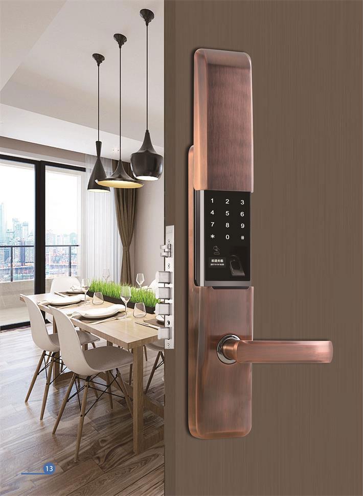 家用指纹智能门锁,家居防盗使用的可以考虑这几款!